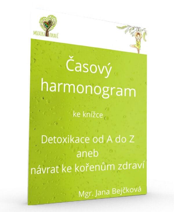 Časový harmonogram - Detoxikace od A do Z