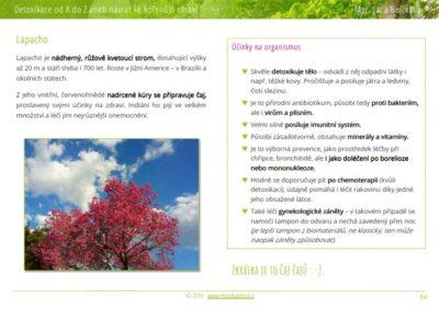 Ukázka z knížky Detoxikace od A do Z