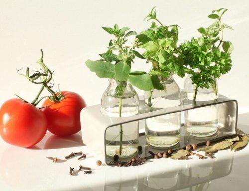 Očista organismu jako základ. Jaká? Systematická a důkladná