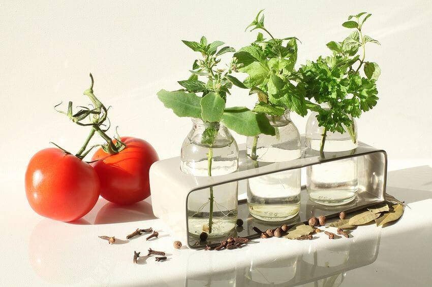 Detoxikace organismu je základem zdraví