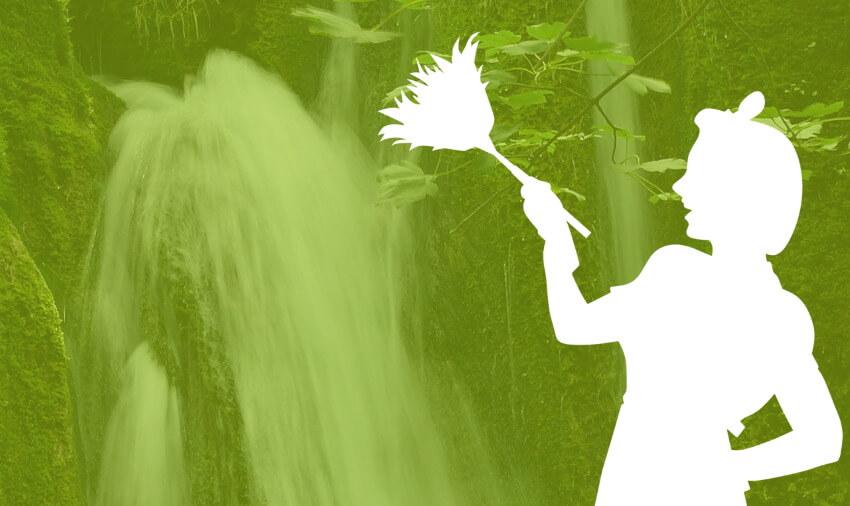 hloubková detoxikace organismu je takový generální úklid v těle