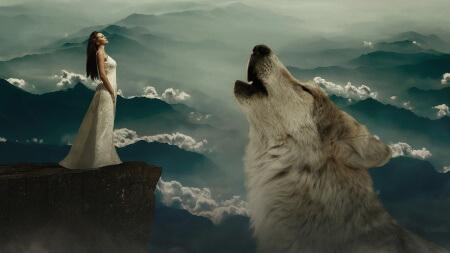 sen - vlk